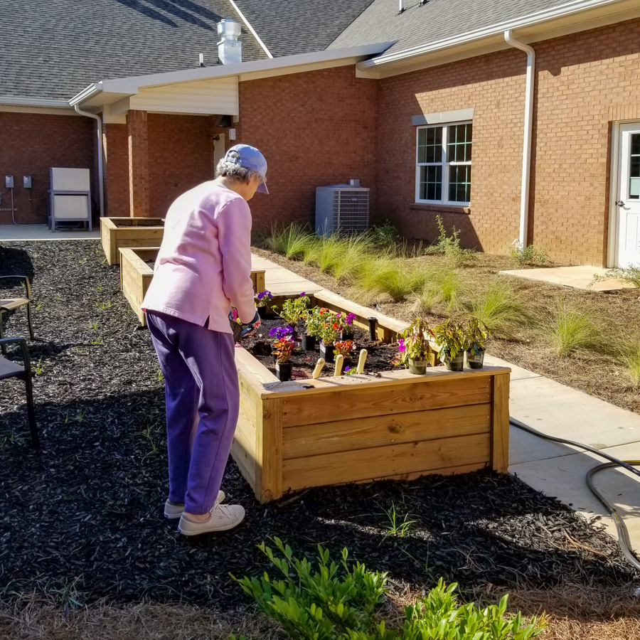 First assisted living planter planted